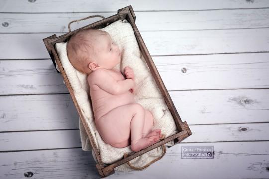 Newborn Photography Belfast