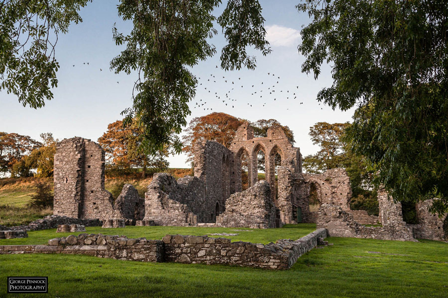 Northern Ireland Photographer - Inch Abbey