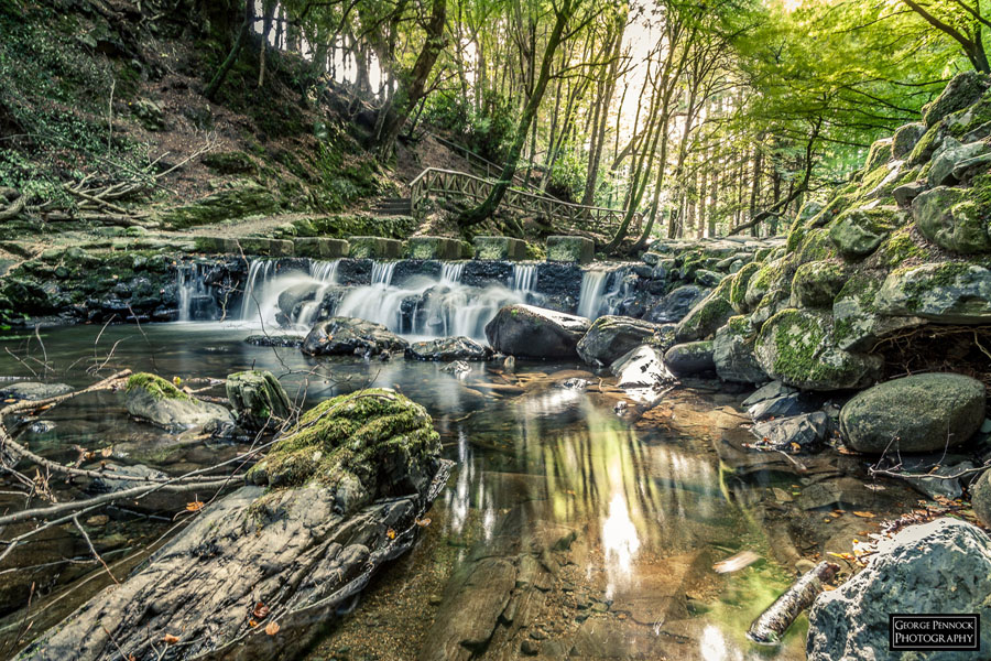 Northern Ireland Photographer - Stepping Stones, Tollymore Forest, Co Down